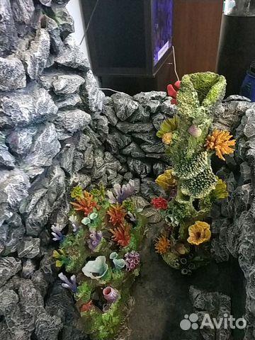 Аквариумы, декорации, фито стены 89068622935 купить 7