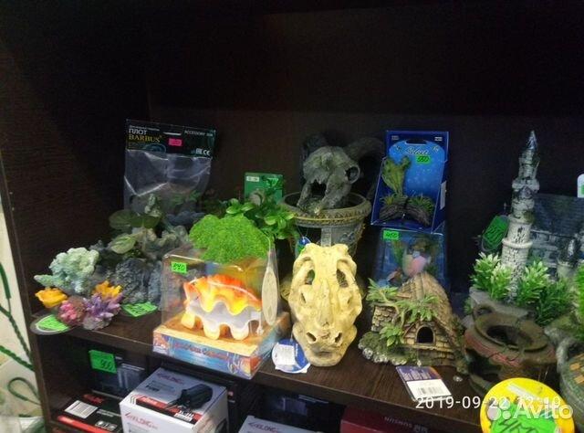 Decorations for aquarium 89081257208 buy 9