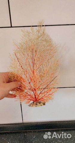 Коралл для аквариума купить 2