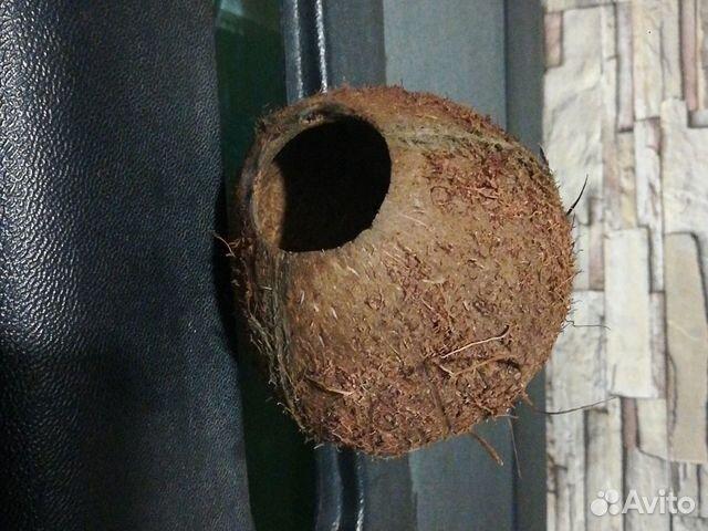 Декор-кокос натуральный  89538576901 купить 4