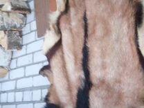 Продам шкуру нубийского козла