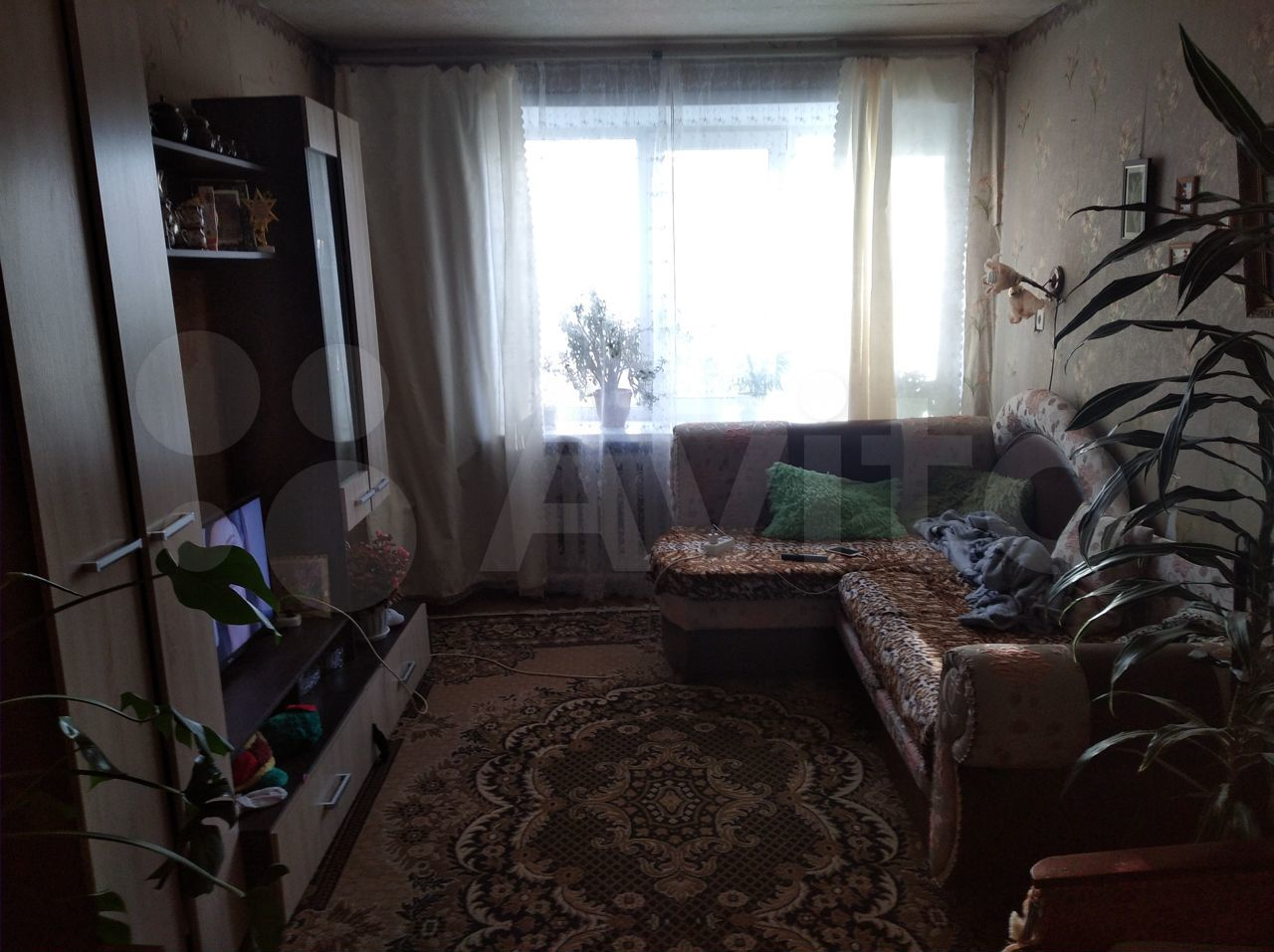 3-к квартира, 61 м², 1/2 эт.  89155417080 купить 2